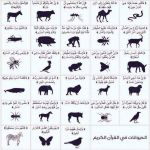 الحيوان في القرآن الكريم